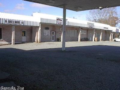 Saline County Commercial For Sale: 21125 Arch Street