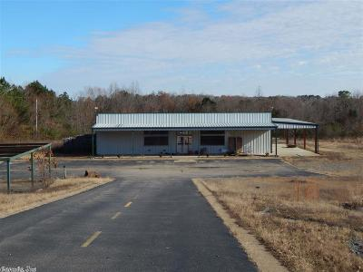 De Queen AR Commercial For Sale: $250,000