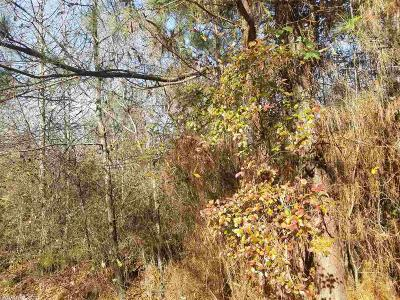 Pine Bluff Residential Lots & Land For Sale: Lot 12 W 19th Street