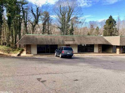 Hot Springs Village Commercial For Sale: 105 Calella Drive