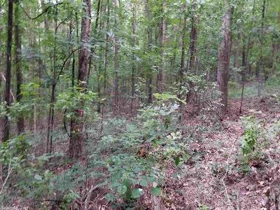 Russellville Residential Lots & Land For Sale: Ouita Circle