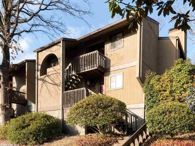 Condo/Townhouse New Listing: 505 Green Mountain #40