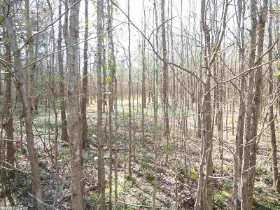Cabot Residential Lots & Land New Listing: Lot 9 Saddle Brook Circle