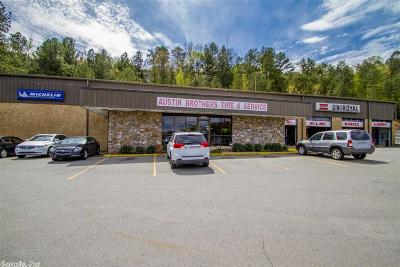 Little Rock Commercial For Sale: 2801 Cantrell Road