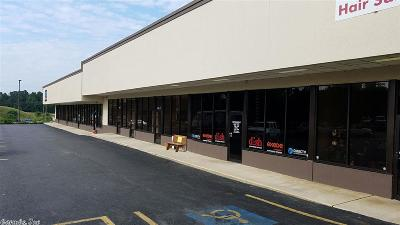 Hot Springs Commercial Lease For Lease: 2100 Albert Pike Road #Suites C