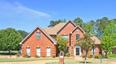Maumelle Single Family Home For Sale: 132 Southshore Drive