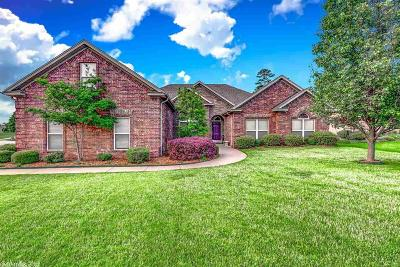 Maumelle Single Family Home For Sale: 141 Scenic Valley Loop