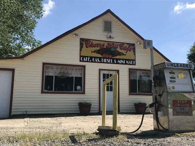 Polk County Commercial For Sale: 5179 Highway 88 E