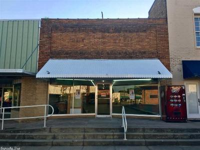 Nashville Commercial For Sale: 116 S Main Street