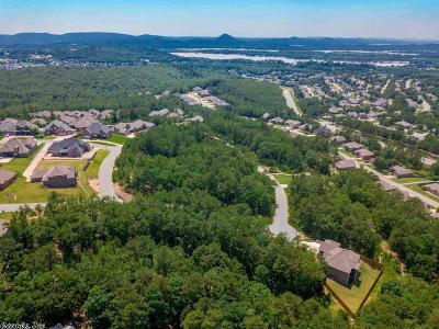 Maumelle Residential Lots & Land For Sale: 4 Crestview Point