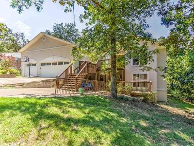 Single Family Home For Sale: 119 Colt Drive