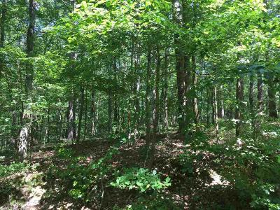 Garland County Residential Lots & Land New Listing: 48 Sabiote Way