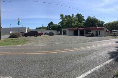 Hot Springs Commercial For Sale: 141 Marion Anderson