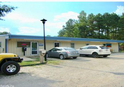Hot Springs Commercial For Sale: 157 Millwood Lane