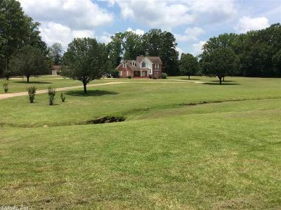 Dallas County Single Family Home For Sale: 219 Brandon St Highway