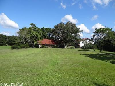 Van Buren County Single Family Home For Sale: 1317 Copeland Road