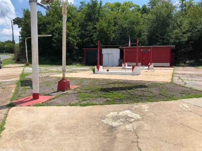 Hot Springs Commercial For Sale: 410 Grove
