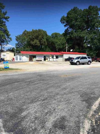 Garland County Commercial For Sale: 107 Highway 347