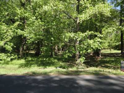 Residential Lots & Land For Sale: LOT 38 CHINQUEPIN