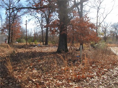 Residential Lots & Land For Sale: TBD S Columbus