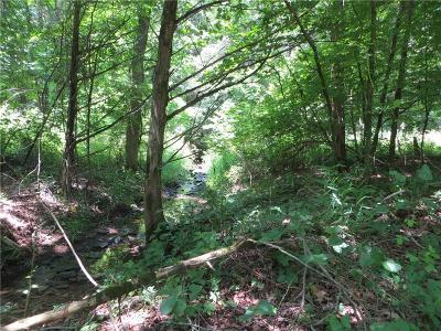 Cedarville Residential Lots & Land For Sale: TBD Whitewater RD