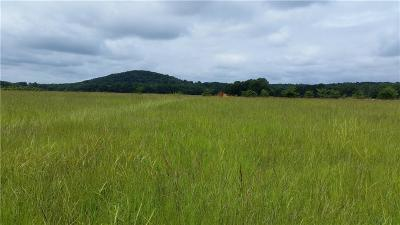 Mulberry Residential Lots & Land For Sale: 0 BENEUX BOTTOM RD