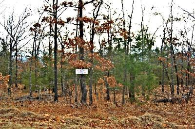 Poteau Residential Lots & Land For Sale: 34431 Pleasant Hills Addition Lot 66