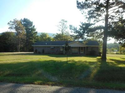 Heavener Single Family Home For Sale: 1110 Morris Creek RD