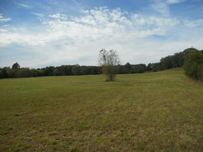 Pocola Residential Lots & Land For Sale: TBD Barnes ST