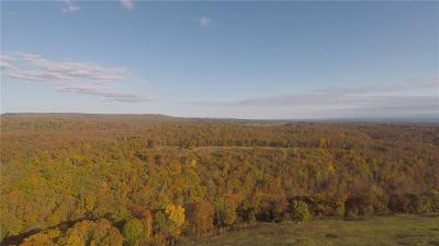 Mountainburg Residential Lots & Land For Sale: TBD Hwy. 348