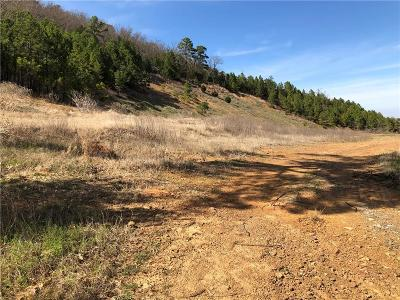 Poteau Residential Lots & Land For Sale: TBD Poteau ByPass US 59/271