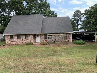 Poteau Single Family Home For Sale: 3100 Witteville Drive
