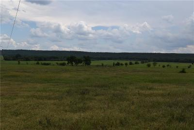 Sallisaw Residential Lots & Land For Sale: Tbd Hwy 59 South S 1026 Highway