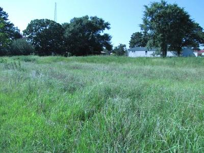 Vian Residential Lots & Land For Sale: 448621 E 979 Road