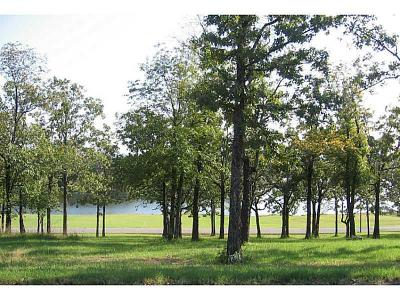 Hackett Residential Lots & Land For Sale: Lot 317 Crestline Dr