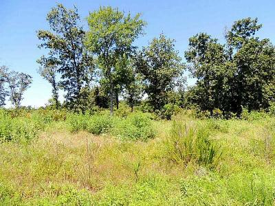 Wister Residential Lots & Land For Sale: Wolf Mountain Dr