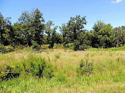 Wister Residential Lots & Land For Sale: Wolf Mountain Drive