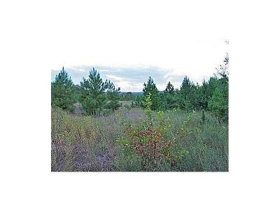 Roland Residential Lots & Land For Sale: 64 Us Hwy