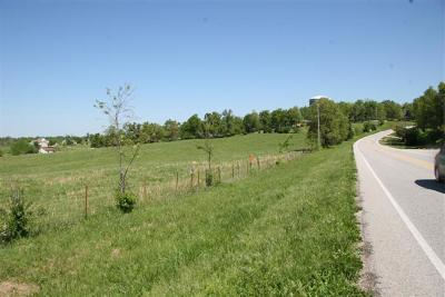 Harrison Commercial For Sale: Lot 4 Old Bergman (1.65 Acre) Road