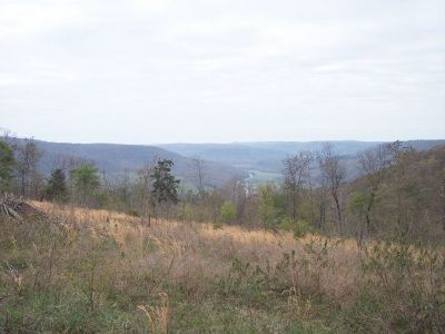 Carroll County Residential Lots & Land For Sale: Mt. Springs Road