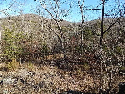 Carroll County Residential Lots & Land For Sale: 64 Eagle Drive