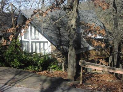 Newton County Single Family Home For Sale: Sno-Ski Loop #4
