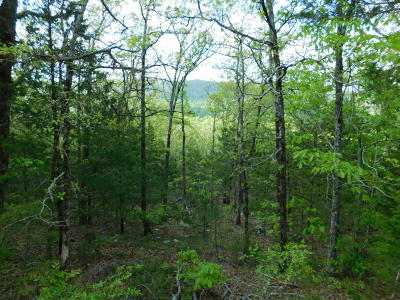 Jasper Residential Lots & Land For Sale: County Road 8355 Lot 3