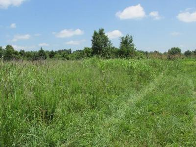 Newton County Residential Lots & Land For Sale: S 7 Hwy Tract 1