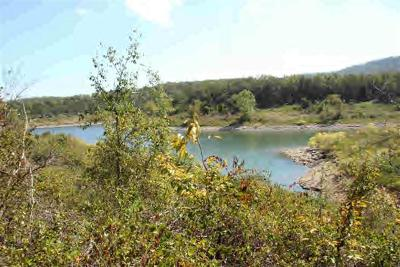 Marion County Residential Lots & Land For Sale: 3.4 Ac Mc 8097