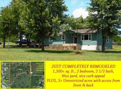 Lead Hill, Diamond City Single Family Home For Sale: 100 N Locust Street