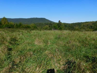 Newton County Residential Lots & Land For Sale: County Road 2800