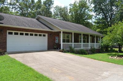 Lead Hill, Diamond City Single Family Home For Sale: 636 W Elm
