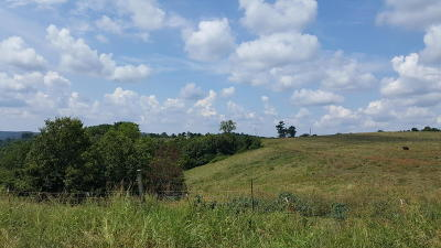 Marion County Residential Lots & Land For Sale: Daisy