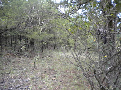Lead Hill, Diamond City Residential Lots & Land For Sale: Lead Hill Road